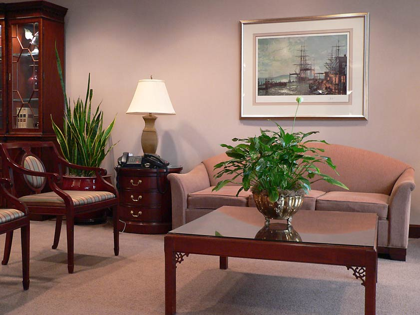 Interior decorating using our plant services means office plants and all indoor plants maintain beauty